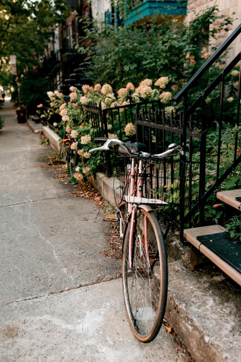 6 premiers mois à Montréal, expatriation d'une photographe et vidéaste culinaire freelance - vélo rose