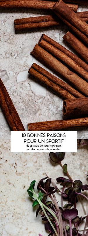 10 bonnes raisons pour un sportif de prendre des jeunes pousses ou des rameaux de cannelle.