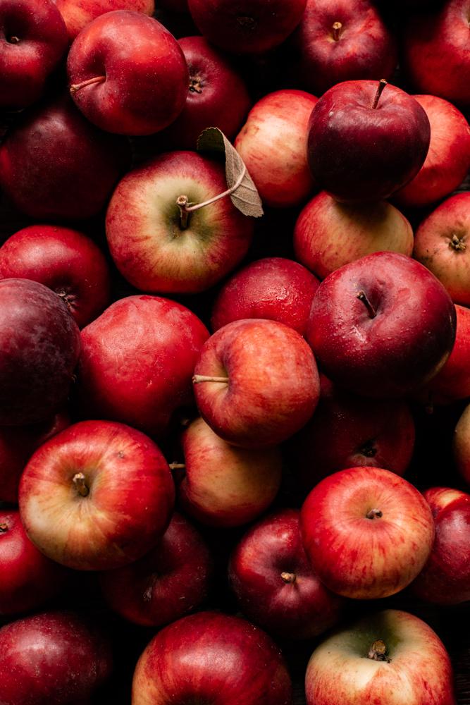 auto cueillette pommes isle aux coudres